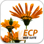 English College Prep Web Suite